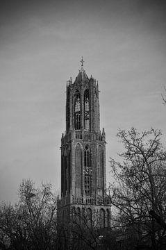 De Domtoren in Utrecht van Patrick Verhoef