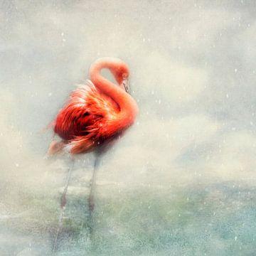 winter schoonheid van Claudia Moeckel