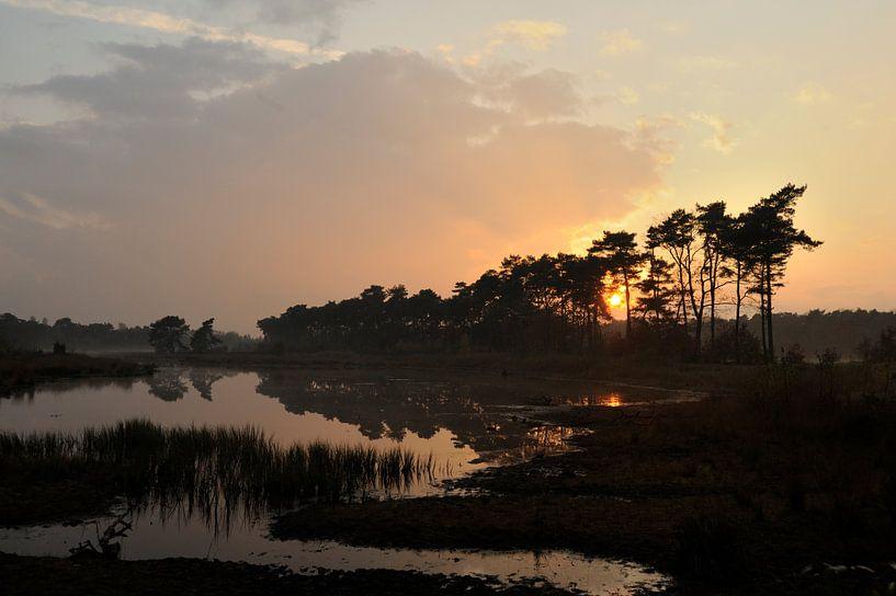 Zonsondergang bij het Vlasroot ven van Gonnie van de Schans