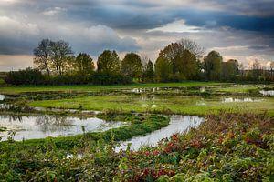 Water op de weilanden tussen Wieler en Rijkel van Hanneke Duifhuize