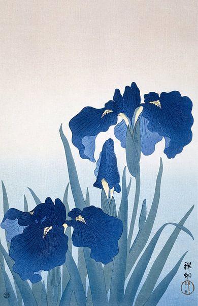 Irises, Ohara Koson van 1000 Schilderijen