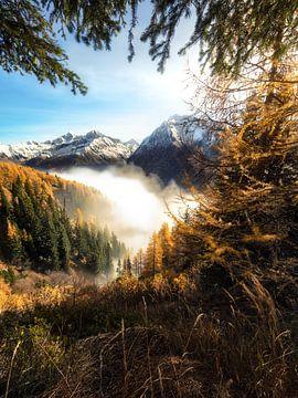Gouden herfst in Zuid-Tirol van Thomas Weber
