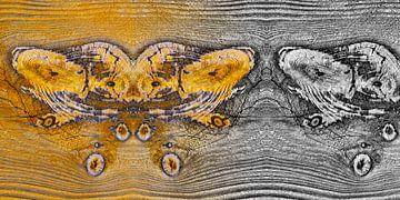 Verweerd hout in close-up van Chris Stenger