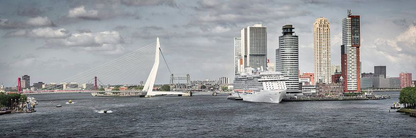 Le pont Erasmus et le Kop van Zuid à Rotterdam sur Frans Lemmens