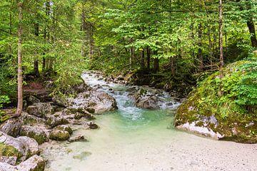 Ramsauer Ache in het toverbos in het Berchtesgadener Land van Rico Ködder