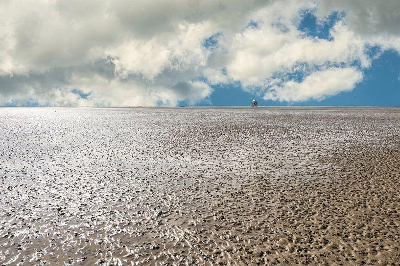 Waddenzee  bij Laagwater van Brian Morgan