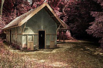 huisje in het bos von kees spel