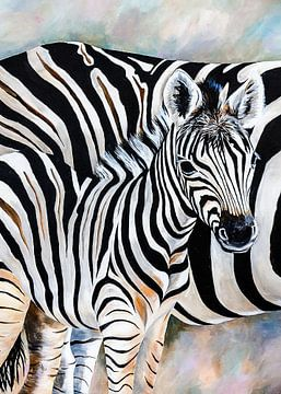 jonge zebra von Angelique van den Berg