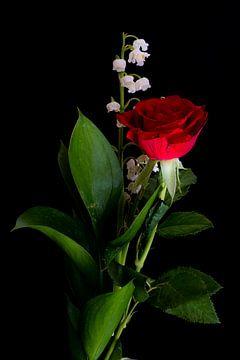 De roos van Rik Verslype