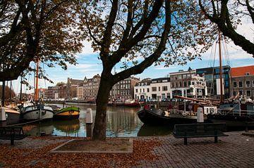 Herfst in Dordrecht van Thomas Poots