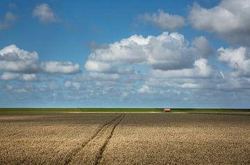 Graanvelden in Groningen van Bo Scheeringa Photography
