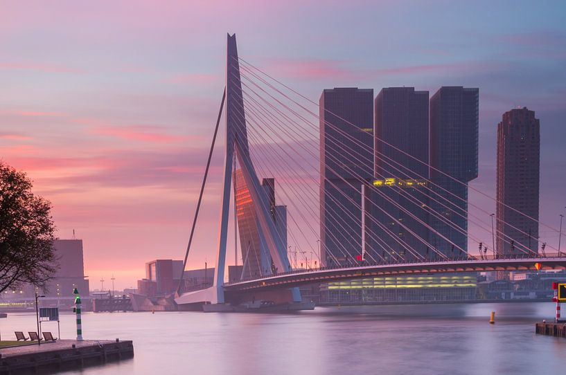 Colorful morning in Rotterdam van Ilya Korzelius