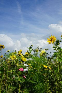 wilde bloemen van Angelique Rademakers