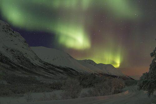 Noorderlicht op de noordpool