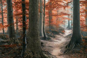 Path of Merdien sur Lars van de Goor