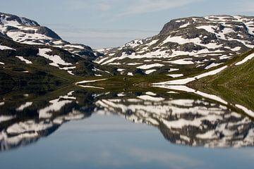 Noors landschap in spiegelbeeld van Simone Meijer