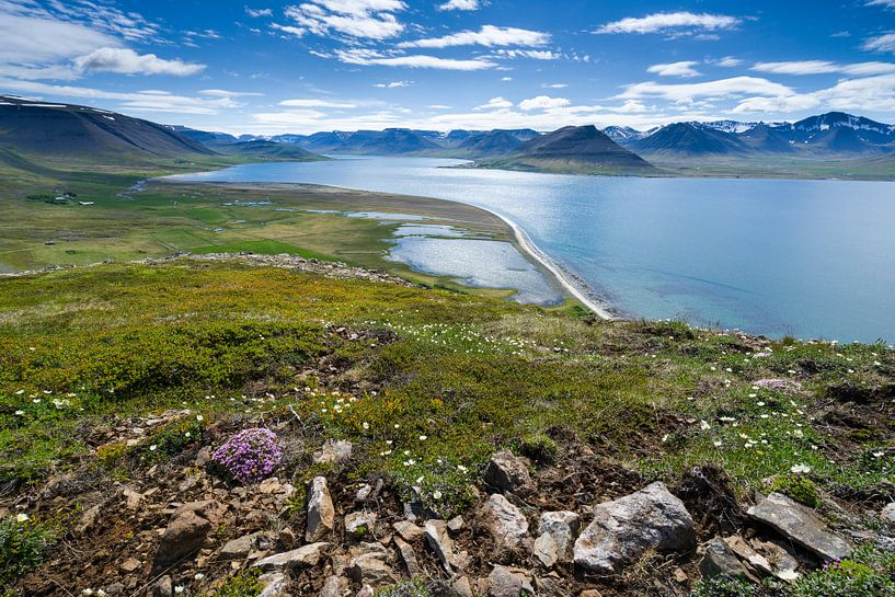 Uitzich over het Dýrafjörður, IJsland van Joep de Groot