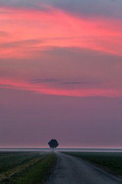 Sunrise in the Dutch highlands van Henk Meijer Photography