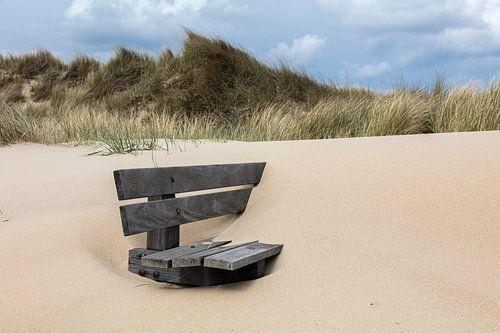 Verborgen onder het zand