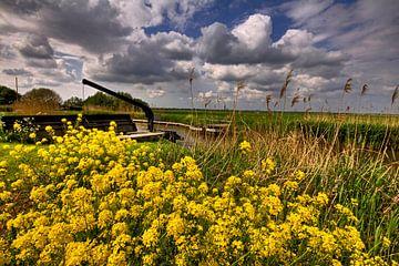 Lente in de Ronde Hoep von Inge Wiedijk