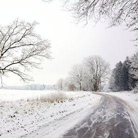 Frozen von Gisela Scheffbuch