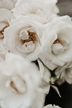 Ivoor bloemen van sonja koning