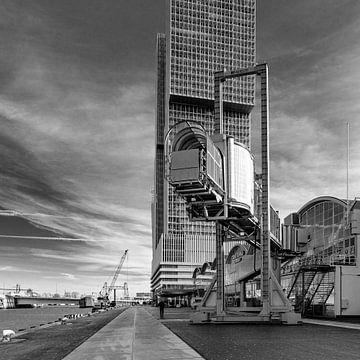 Cruise Terminal Rotterdam van Tony Buijse