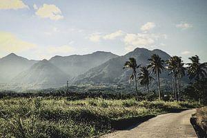 Natur Ost-Taiwan. von Erik Juffermans