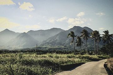 Natuur Oost-Taiwan. van Erik Juffermans