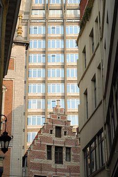 Hoog en laag   Antwerpen van Rafael Delaedt