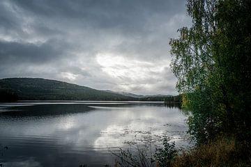 Meer in zuid Noorwegen op een donkere dag van Mickéle Godderis