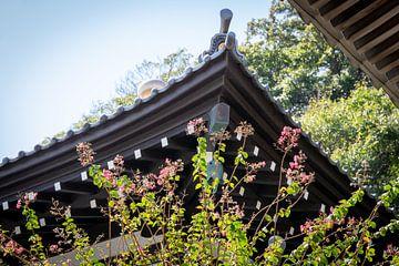 Japans tempeldak en bloesem van Marcel Alsemgeest