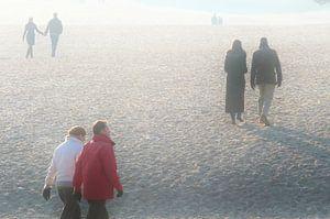 Mist in natuurgebied De Lange Duinen, Soest