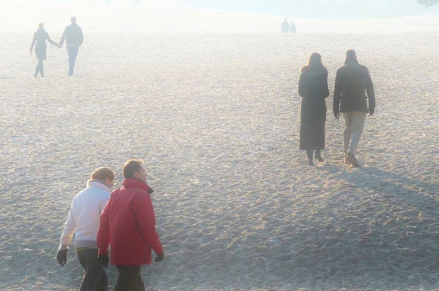Mist in natuurgebied De Lange Duinen, Soest van Lex Boon