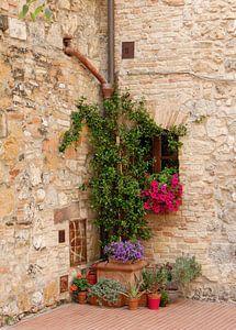 Tuintje in San Gimignano.