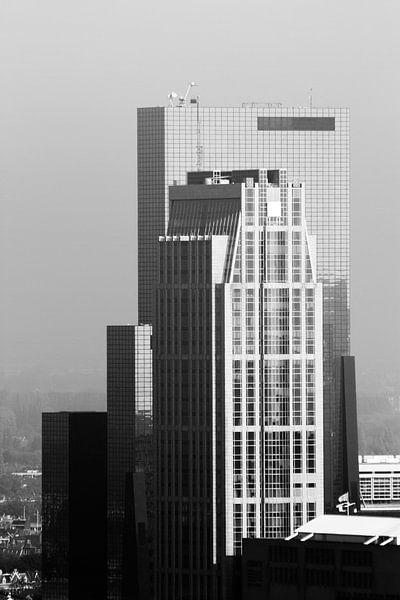 Rotterdam  van Sander Monster