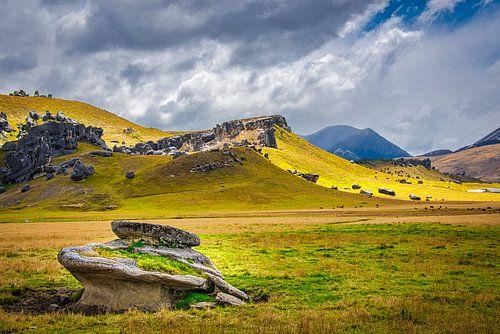 Rotsen bij Castle Hill, Nieuw Zeeland