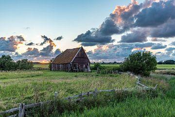 Texel Sonnenuntergang Hühnerstall Den Hoorn von Texel360Fotografie Richard Heerschap