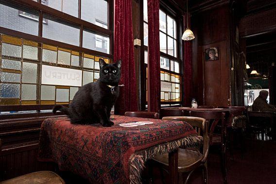 Huiskat Café Hegeraad, Amsterdam van Robert van Willigenburg