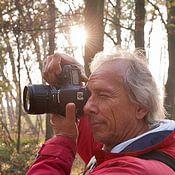 Rene van der Meer profielfoto