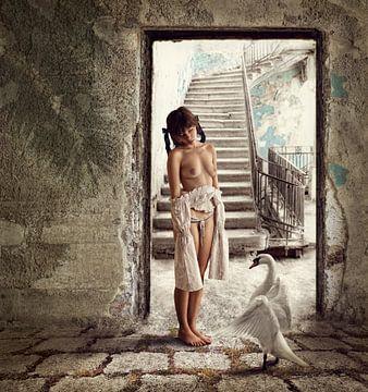 Princess and the Swan, Dmitry Laudin van 1x