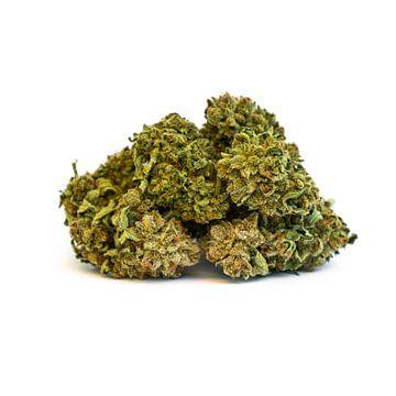 Fleur de marijuana à l'herbe de cannabis sur Felix Brönnimann