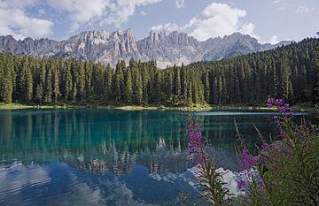 Het meer van Carezza met Latemar