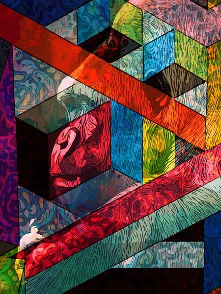 Gorilla & Shapes van Maureen Kroep