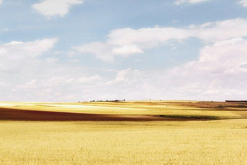 La Mancha I van