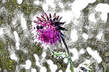 Biene auf Blume von Gert-Jan Siesling