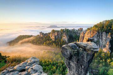 Am Wehlgrund im Elbsandsteingebirge von Michael Valjak