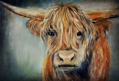 Schotse Hooglander ( schilderij) van Els Fonteine