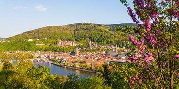 Heidelberg met het kasteel Heidelberg in het voorjaar van Werner Dieterich