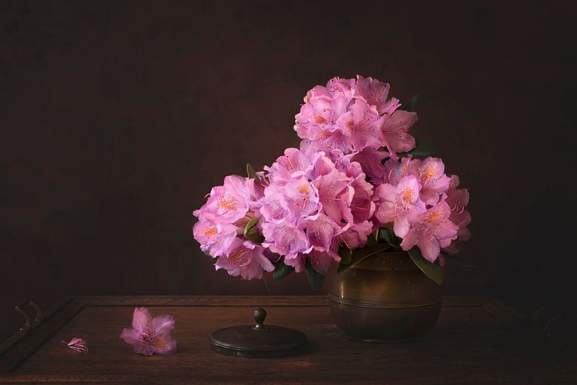 Nature morte florale, Rhododendron sur Joske Kempink